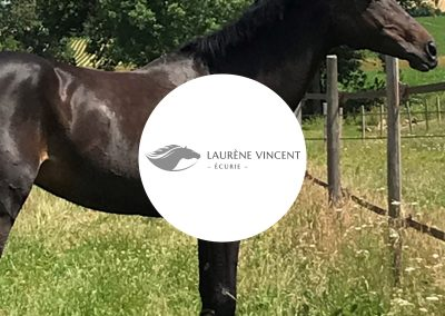 Écurie Laurène Vincent