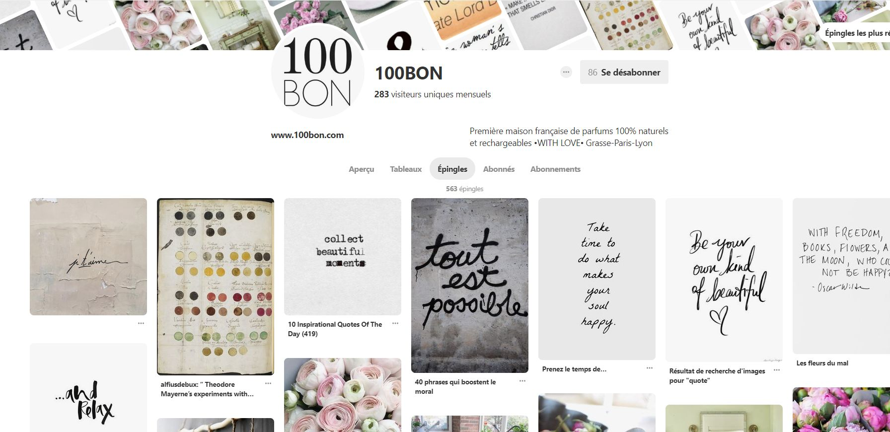 social-commerce-pinterest-100BON