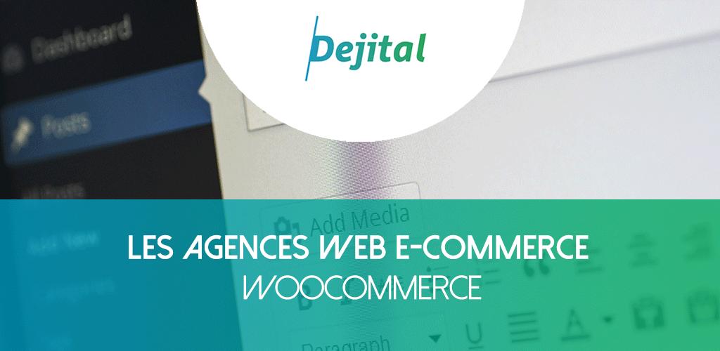 Les Agences Web WooCommerce